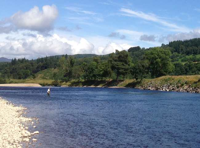 Unleash your appreciation of the great outdoors on a Scottish salmon river with a fly rod in your hand. Nothing beats that scenario especially with the added chance of heart racing contact with the ultimate gamefish of all being a distinct possibility.