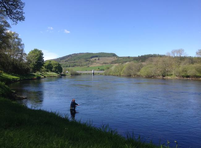 The River Tay Is A First Class Salmon Fishing River