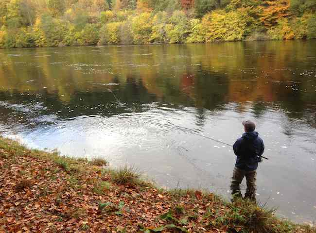 The Colours Of Autumn On The Salmon Rivers Of Scotland