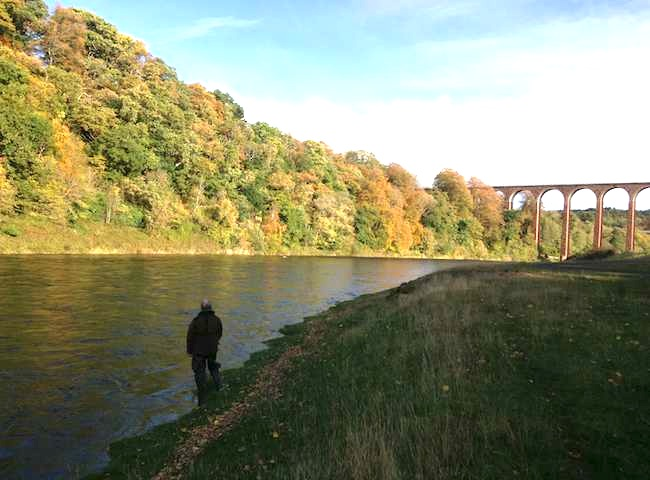 The Lovely Autumn Scenery On The Salmon Rivers Of Scotland