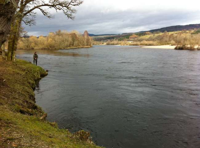 Come To Scotland For Your Salmon Fishing Holiday