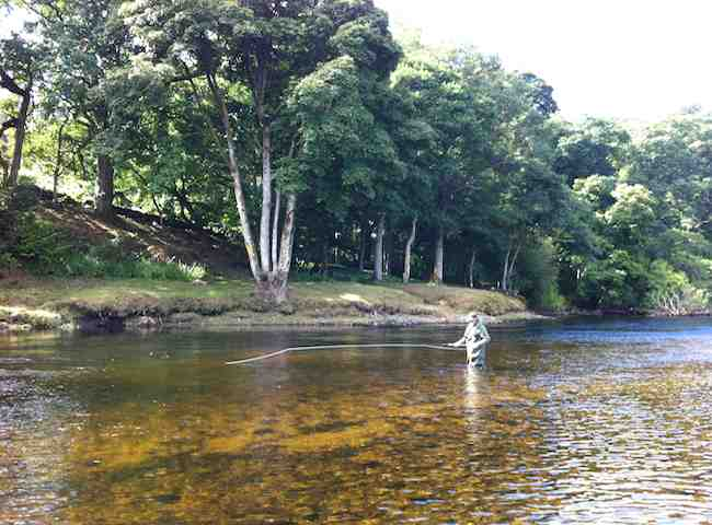 The Summer On Scotland's Salmon Rivers Is A Beautiful Time Of The Year