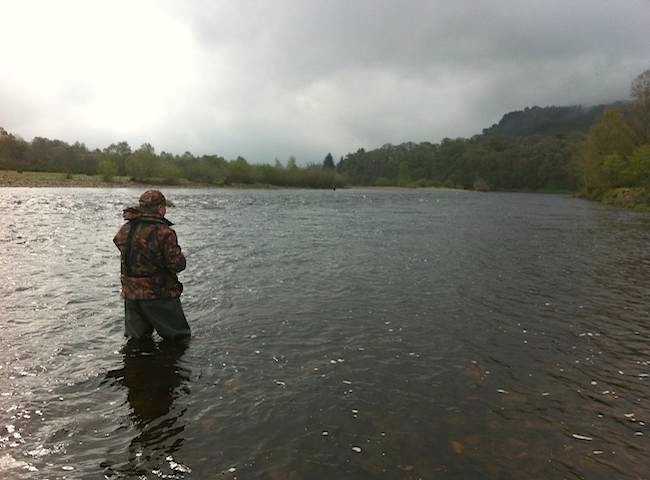 Come To Scotland For A Salmon Fly Fishing Trip