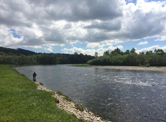 Fly Fishing For Salmon On The Rivers Of Scotland