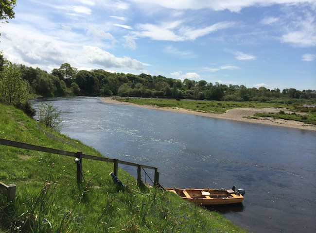 The Perfect River View In Scotland During Late Spring