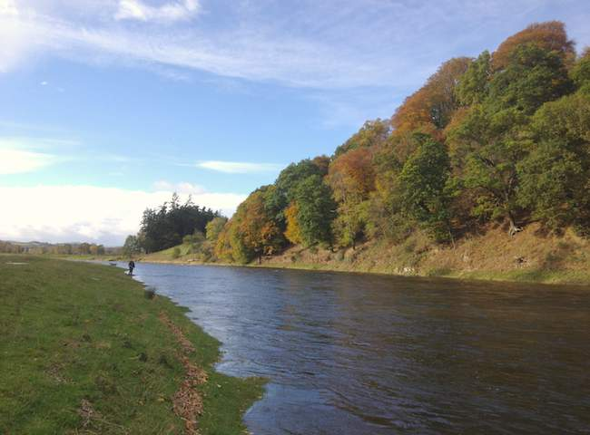 The River Tweed Is One Of The Best Salmon Rivers In Scotland