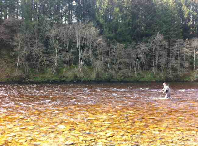 The Crystal Clear Scottish Salmon Rivers Awaits You