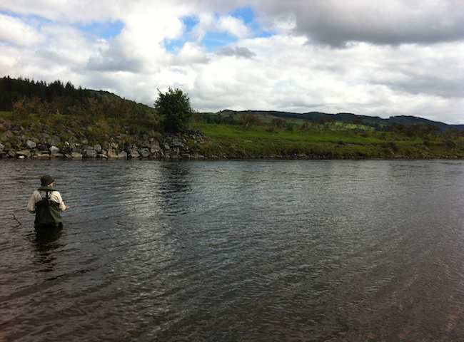 Here's A Lady Salmon Fisher Out In The River Tay