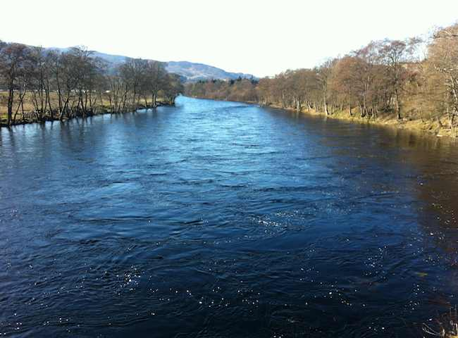 Come And Fish For Salmon In Scotland