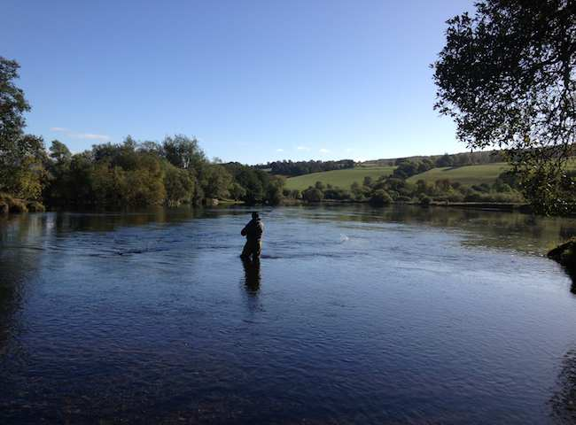 Scotland Offers Many High Quality Salmon Fishing Ve