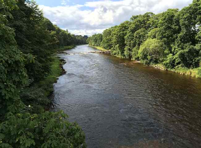 River Dee Fishing Holidays