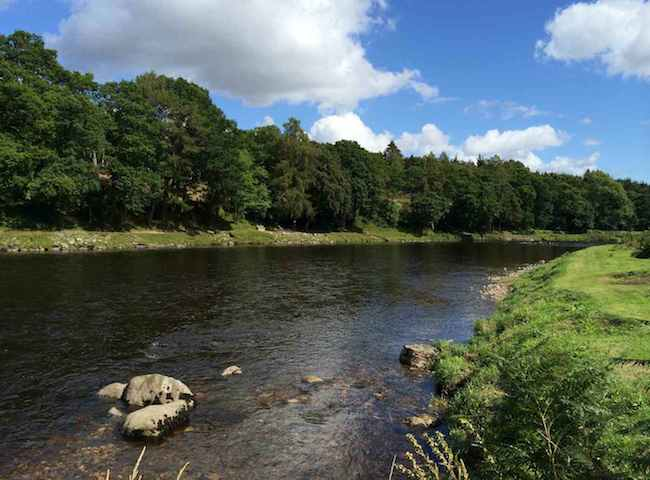 Fishing On The River Dee