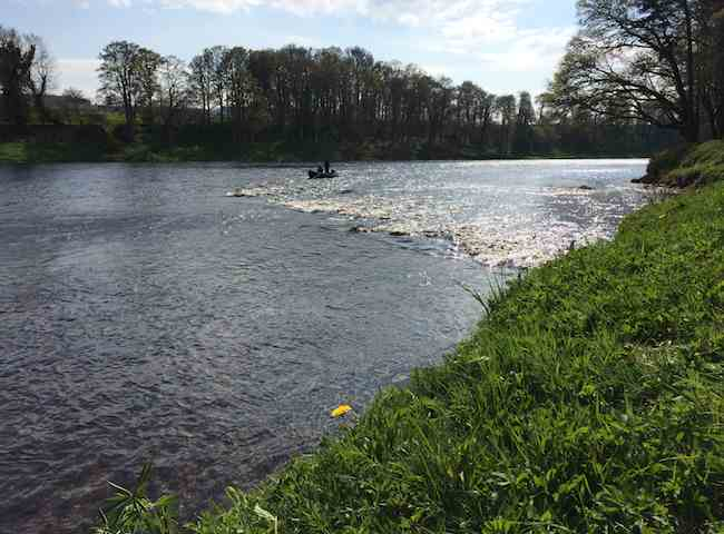 Boat Fishing Trips On The River Tay