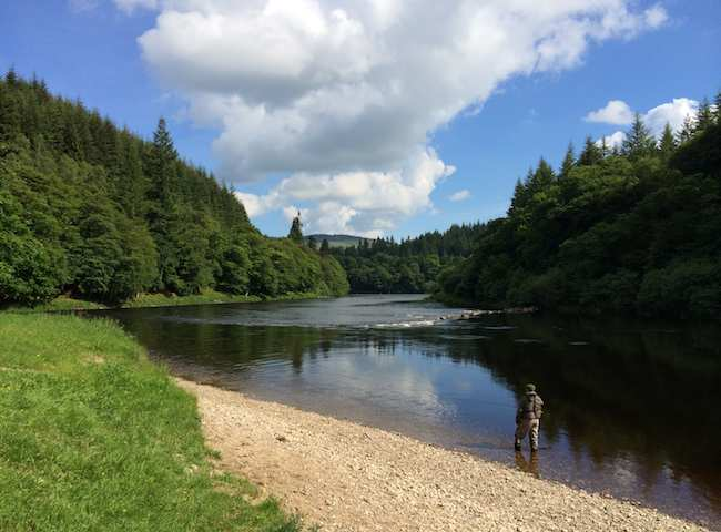 River Tay Professional Guides