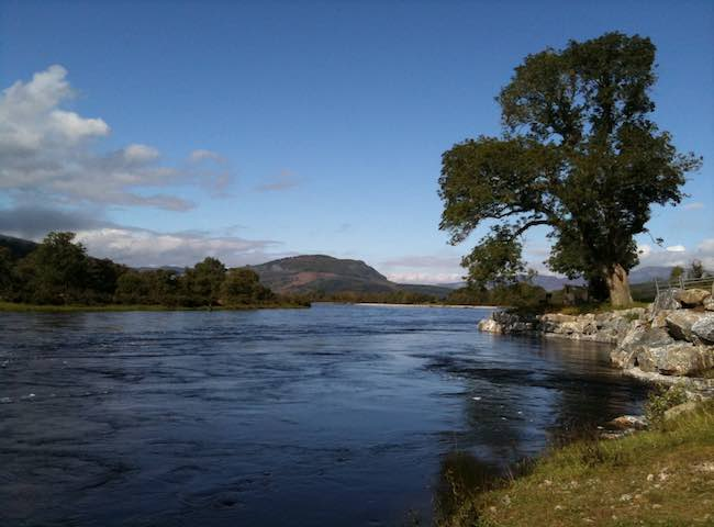 The River Tay