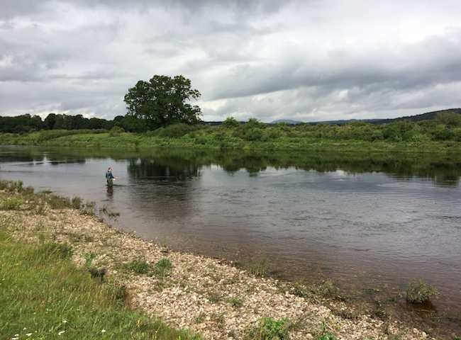Salmon Fly Fishing Escapism