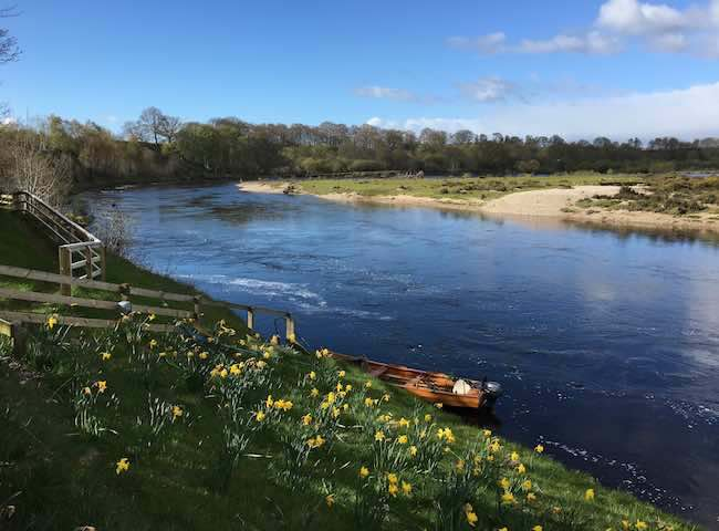 There's nothing that beats a close up encounter with a Scottish Spring salmon during the beautiful early months of the Scottish salmon fishing season. This is indeed the time for a truly optimal salmon fishing experience.