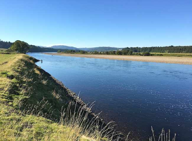 Look at this for a superb view of Scotland's most famous salmon fishing river. The River Tay is indeed a special salmon fishing venue and thousands of returning salmon fishers ascend on its glorious riverbanks each year.