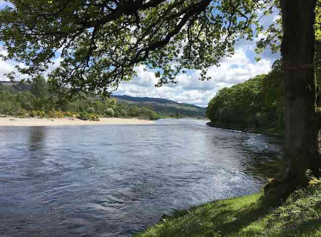 Look at this for a shot of Scottish salmon river brilliance! This is one of many River Tay salmon fishing 'hot spots' which is located directly downstream of the mouth or the River Tummel which is a fantastic Spring salmon run tributary of the Tay.