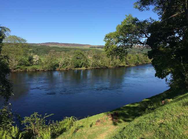 Here's a fine shot of the River Tay with its dark swirling mysterious waters that can lure anglers from all across the globe. The Tay is indeed Scotland's flagship salmon river and always has sufficient water due to its massive loch fed headwater catchment also making it the best bet for fresh run fish.