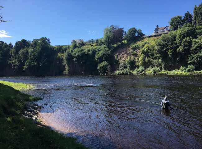 The River Tay in beautiful Perthshire is indeed one of Scotland's most famous and consistent salmon fishing destinations. This river fishes from mid January to mid October making it one of the most accessible Scottish salmon rivers of all.