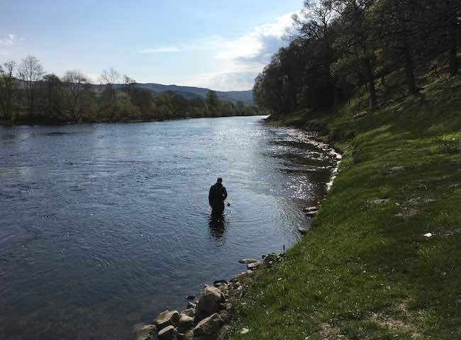 There's some of the very best River Tay salmon fishing to be found in the area between Dunkeld & Pitlochry in the River Tay Valley. These Perthshire towns also have many excellent hotel & B&B accommodation options for visiting salmon anglers.