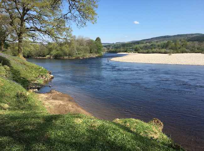 If you are looking for a special salmon fishing trip to Scotland allow me to position you on one of the River Tay's most potent running salmon ambush points and also advise on equally lovely local accommodation options.