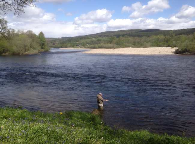 Late Spring Salmon Fishing On The River Tay In Scotland