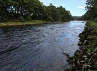 The Perfect Scottish Salmon Rivers