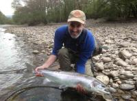 Fine Spring Salmon From The River Tummel