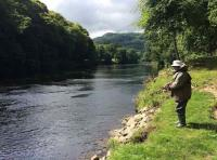 Spin Fishing On The River Tay