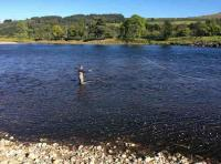 Fly Fishing The River Tay