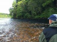 Scottish Salmon Fishing Tactics