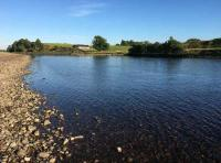 River Tay Salmon Fishing Events