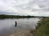 Fishing The River Tay In The Summer