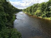 Fishing For Salmon On The River Dee