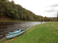 River Tweed Guided Salmon Fishing