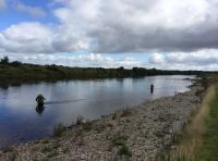 Looking For Salmon Fishing In Scotland