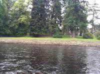 Dunkeld Salmon Fishing Guide