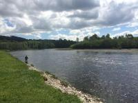 Salmon Fishing Paradise In Scotland