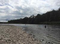 Find Salmon Fishing In Scotland