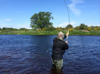Fishing The Fly In Scotland