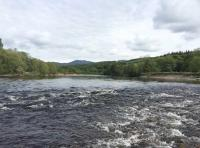 The Fast Flowing Salmon Rivers Of Scotland
