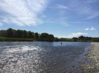 The Scottish Salmon Fishing River