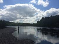 Fly Fishing Scotland For Atlantic Salmon