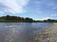 Fly Fishing For Scottish Salmon