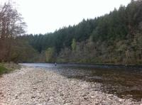 Salmon Fishing On Scotland's Rivers