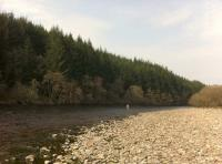 Catch A Scottish Salmon On The Fly