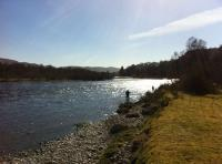 Scottish Salmon Fishing Hospitality Days