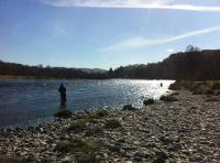 Salmon Fly Fishing In The Spring